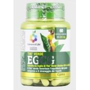 The Verde EGCG
