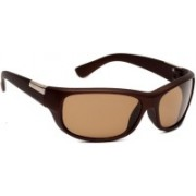 New Zovial Round Sunglasses(Brown)