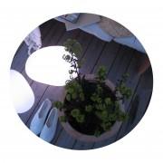 Solhem Trädgårdsbelysning sten lampa mellan