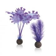 biOrb malá rostlina set fialová