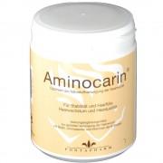 Fontapharm AG Aminocarin® Pulver