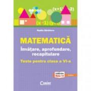 Matematica. Invatare aprofundare recapitulare. teste pentru clasa a VI-a