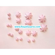 Light Pink Butter Flower - 5 sizes