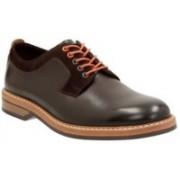 Clarks Pitney Walk Dark Brown Lea Outdoors For Men(Brown)