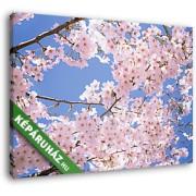 Virágzó cseresznyefa (35x25 cm, Vászonkép )