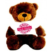 2 feet big brown teddy bear wearing special Best Sister T-shirt