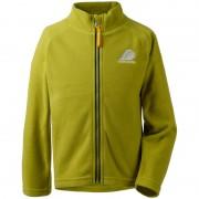 Didriksons Monte Kids Microfleece Jacket Grön