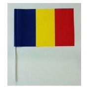 Stegulet Romania 16x24cm cu betisor