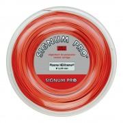 Signum Pro Plasma HEXtreme Rol Snaren 200m