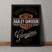 Quadro Decorativo Harleyy Davidson 35x25