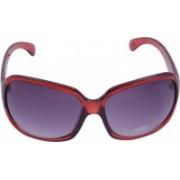 Miami Blues Wayfarer Sunglasses(Grey)