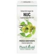 Extract Muguri Nuc 50ml PlantExtrakt