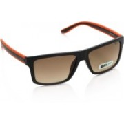 Opium Wayfarer Sunglasses(Brown)