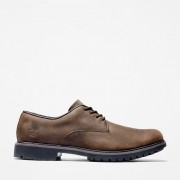 Timberland Chaussure Oxford Stormbucks Pour Homme En Marron Marron Foncé, Taille 41