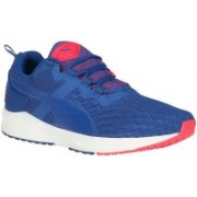 Puma IGNITE XT v2 Mesh Outdoors For Men(Blue)