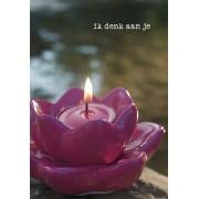 Kaarten Lotuskaart Ik Denk Aan Je