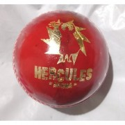 Hercules Arena Leather Cricket Ball (6 Balls)