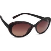INVU Oval Sunglasses(Brown)