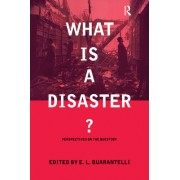 What Is a Disaster?: A Dozen Perspectives on the Question