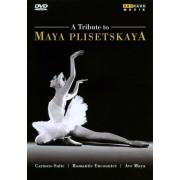 A Tribute to Maya Plisetskaya [DVD] [2010]