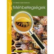Méhbetegségek