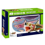 Mozlly Multipack - Fame Master 4D Vision 13 inch long Great White Shark Anatomy Model Educational Playset (20 pieces with stand and illustrated guidebook) (Pack of 2) - Item #S119007_X2