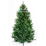 Коледна елха Alpina Натурален Смърч 180 см