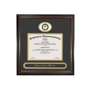 Signature Announcements University-of Illinois Marco de Diploma de graduación de 16 x 16 Pulgadas, Color Caoba Mate