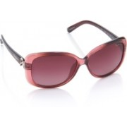 Pepe Jeans Over-sized Sunglasses(Pink)