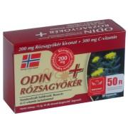 Odin rózsagyökér 30db