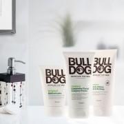 Set cadou barbati Bull Dog Expression