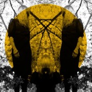 Feel It Break [LP] - VINYL
