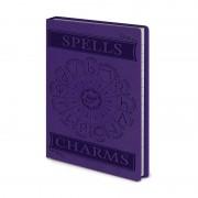 Pyramid Harry Potter carnet de notes sortilèges et charmes