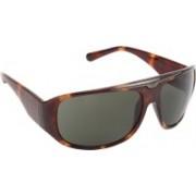 Calvin Klein Rectangular Sunglasses(Green)