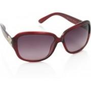 Polaroid Over-sized Sunglasses(Pink)