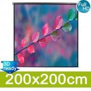 vidaXL Ръчен прожекционен екран, с регулируема височина, 200 x 200 см