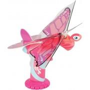 Пеперуда Butterfly