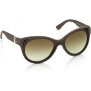 Diesel Oval Sunglasses(Brown)
