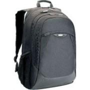 Targus TBB017AP 15.6 L Laptop Backpack(Black)