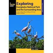 Exploring Everglades National Park and the Surrounding Area: A Guide to Hiking, Biking, Paddling, and Viewing Wildlife in the Region, Paperback/Roger L. Hammer