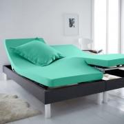 La Redoute Interieurs Lençol-capa em algodão, cama articulada, SCENARIOlaguna- 160 x 200 cm