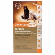 Advantage Multi (Orange) Kittens & Small Cats up to 10lbs 6 Doses