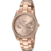 Fossil ES4315 Watch - For Women