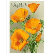 Carmel, California State Flower Poppy Flowers (Playing Card Deck 52 Card Poker Size With Jokers)