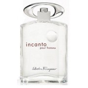 Ferragamo Salvatore Ferragamo Incanto Pour Homme Eau De Toilette 100 Ml Spray - Tester (none)