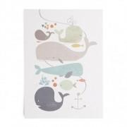 Dille&Kamille Carte, baleines
