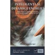Inteligenta si dinamica energiei. Ecotehnologii Vol. IV Valorificarea fortelor naturale pentru obtinerea energiei gratui