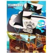 Teamboys Pirates Ships