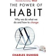Cornerstone The Power of Habit : Why We Do What We Do, and How to Change - Charles Duhigg