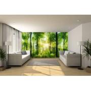 Fotobehang expositie kwaliteit 370x950 cm